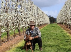 Beaven Eatts - Genuinely Southern Forests Food Council Chair